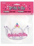 Hen Night Tiara and Veil